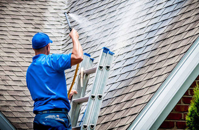 quincy roof cleaning